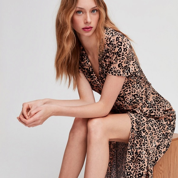 Aritzia Dresses & Skirts - Aritzia Wilfred Leopard Shirt Dress